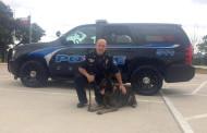 Weekly Arrests in Keller