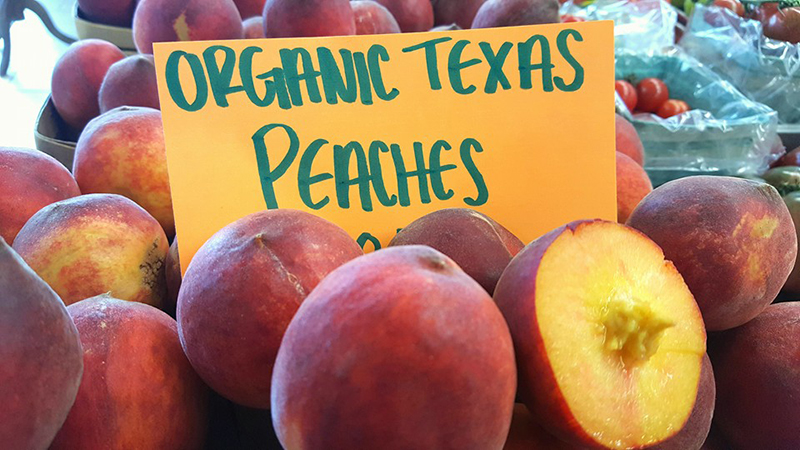 GRAPEVINE MARKET & GRAPEVINE FARMERS MARKET NOW OPEN Thursday, Friday, Saturday 10am to 4pm