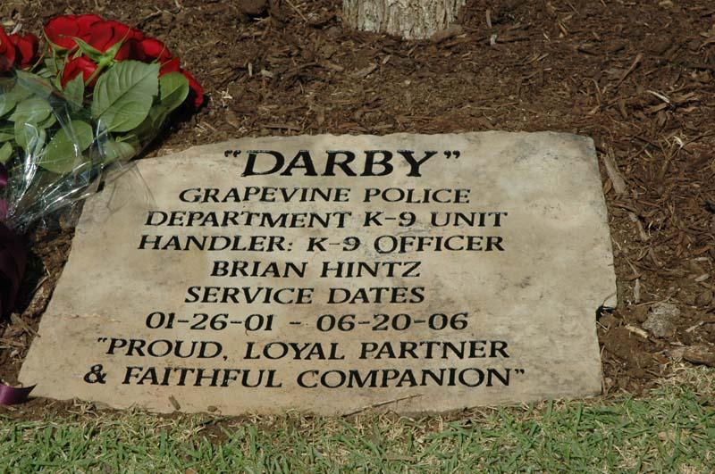 darbyDSC_6919